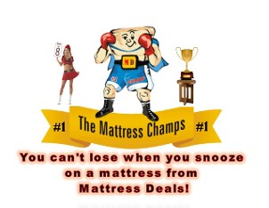 The Mattress Champs